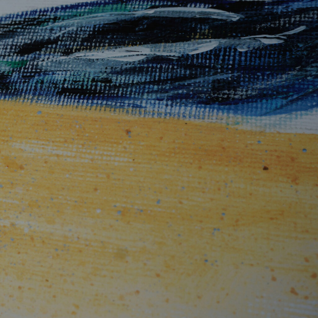 Fine art print details sea shell