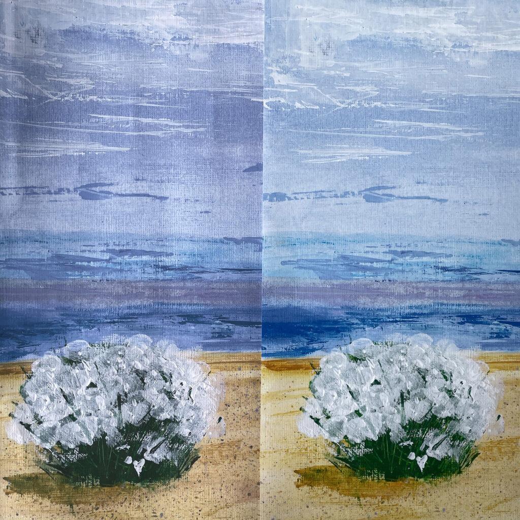 Fine Art Print Detail Acrylic Sea Kale