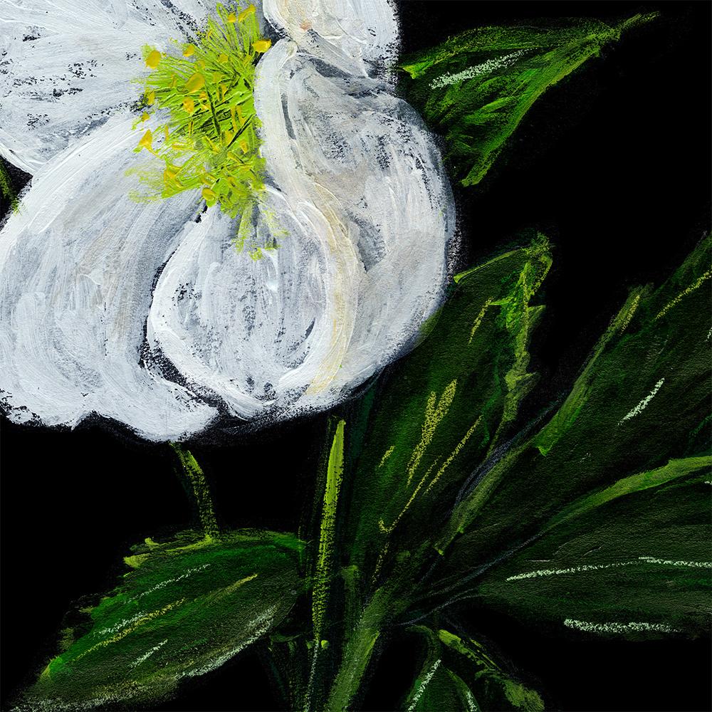 hellebore flower acrylic painting anderidaart